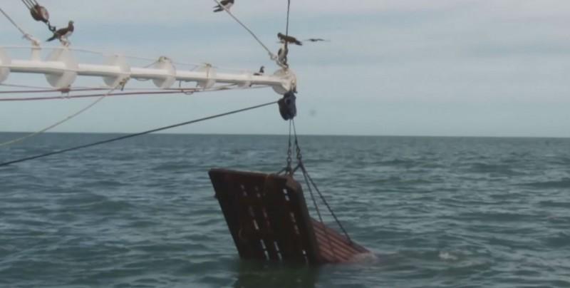 Crean prototipo de nueva embarcación pesquera para Sinaloa