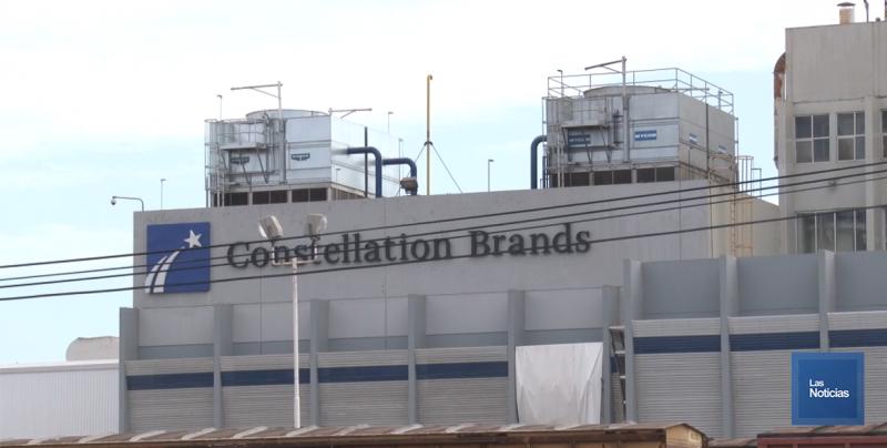 Recibe Constellation Brand premio nacional de Exportación 2018