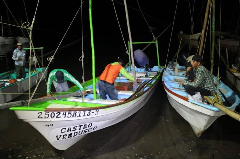 Salieron a la captura de camarón cerca de 20 mil pescadores en Sinaloa