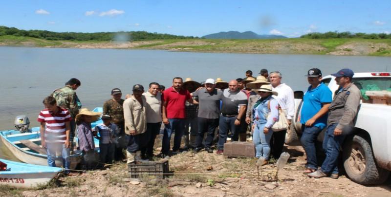 Depositan medio millón de alevines en la presa Sanalona