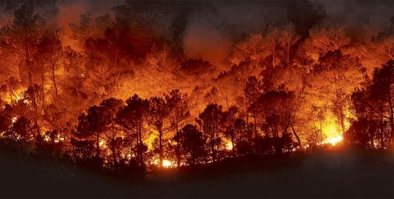 Bomberos dan por controlado el incendio más grande de historia de California
