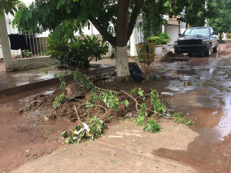 Colonia Cuauhtémoc, también resultó afectada por las lluvias