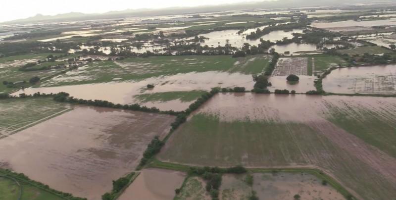 Evaluación de daños en el sector agropecuario para activar el seguro catastrófico