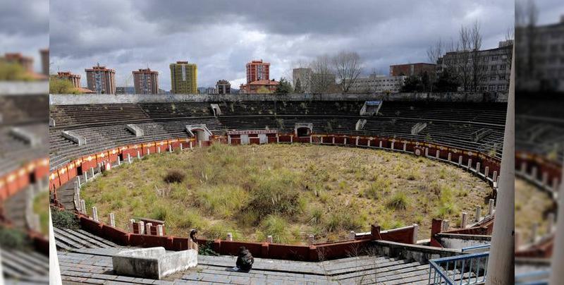 Plaza de toros se llena de plantas tras 7 años de abandono total