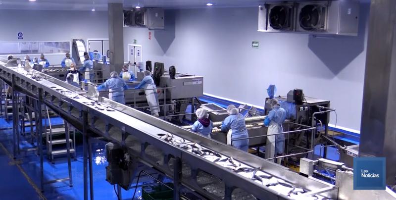 Pronostican que Sonora cierre el año con 20 mil nuevos empleos