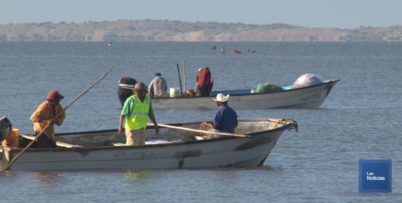 En Huatabampo, buscan pescadores ser reconocidos como sector productivo