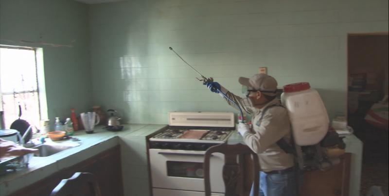En Mazatlán está controlado el mosquito del dengue: Jurisdicción Sanitaria VI