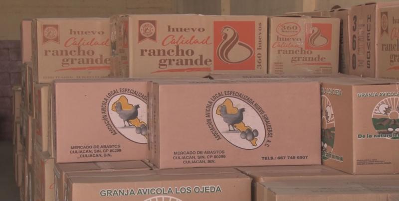 Mantiene Sinaloa el estatus libre de enfermedades en el sector avícola