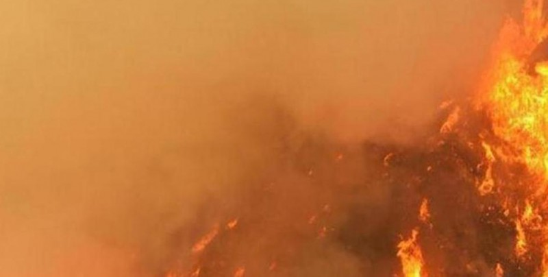 Detienen a madre por provocar incendio que calcinó a hijos en Costa Rica