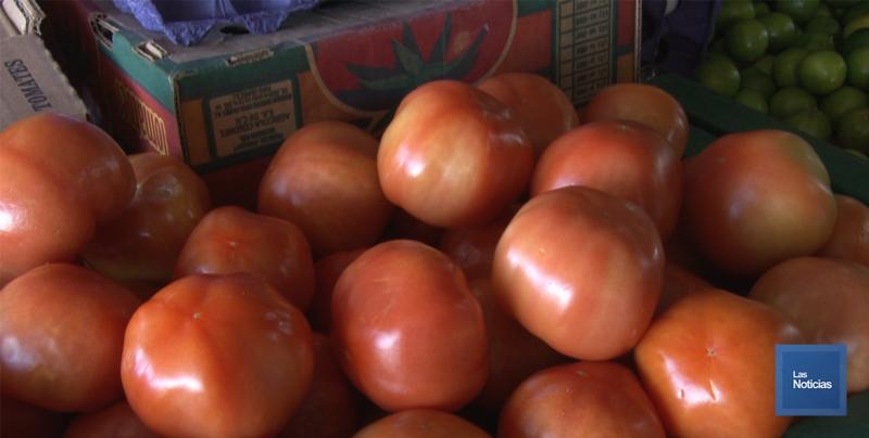 Por las nubes el precio del tomate en la región