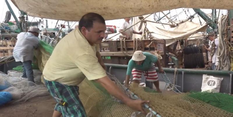 Recortado un 45 por ciento del presupuesto al sector pesquero del país