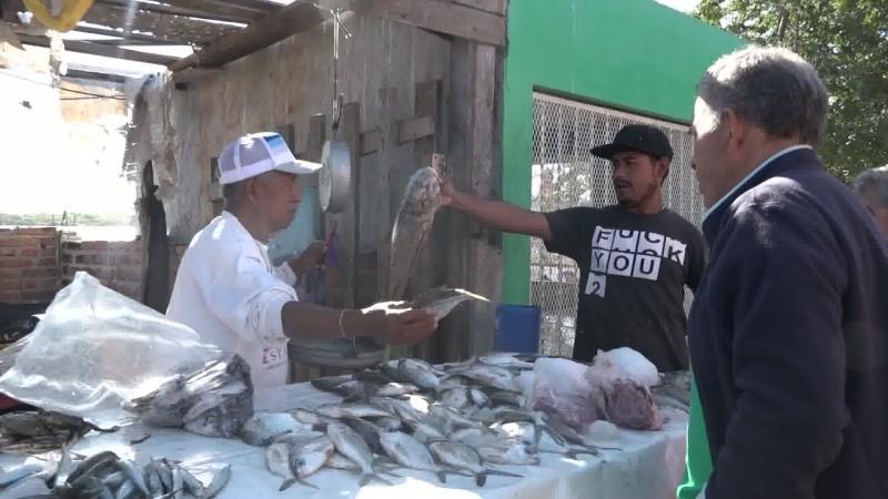 Alta demanda de pescado en el embarcadero de la Isla de la Piedra