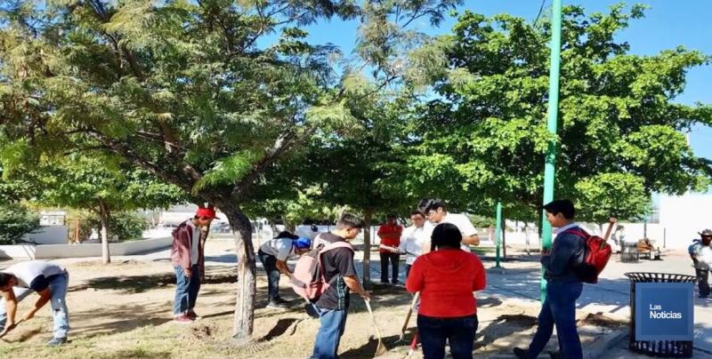 Alumnos de CONALEP Sonora, crean primer huerto escolar