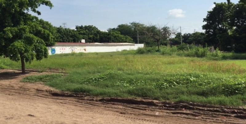 Rescatarán áreas verdes en Culiacán