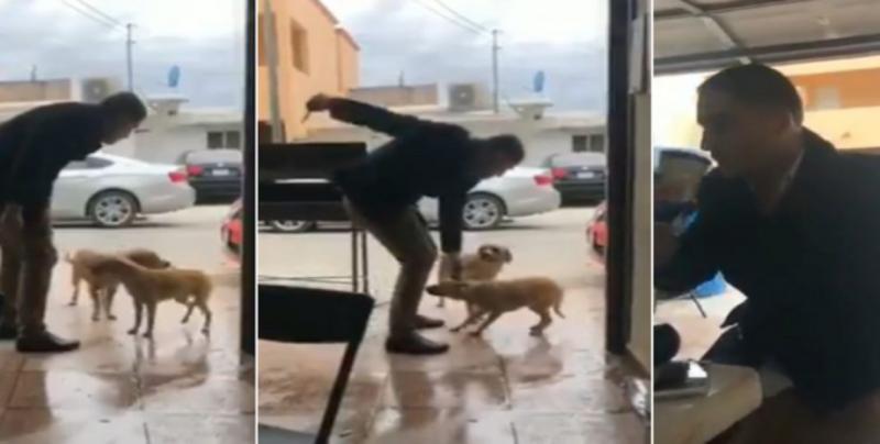 Ofrecen 50 mil pesos por agresor de perro en Coahuila