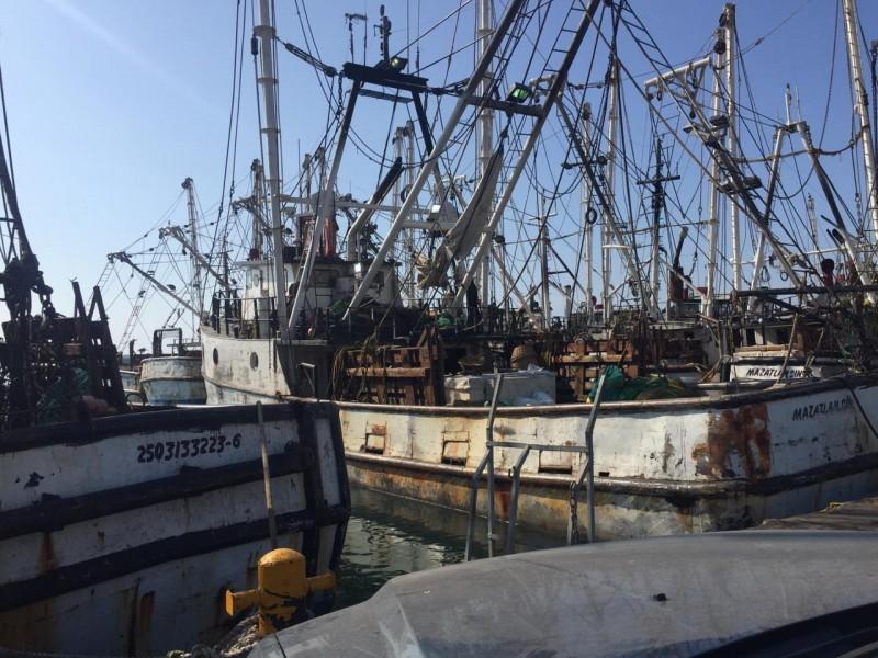 Quedan desempleados más de 3 mil pescadores: Armadores