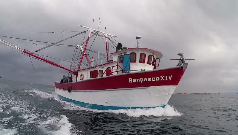Piden se declare estado de emergencia para la pesca de altamar