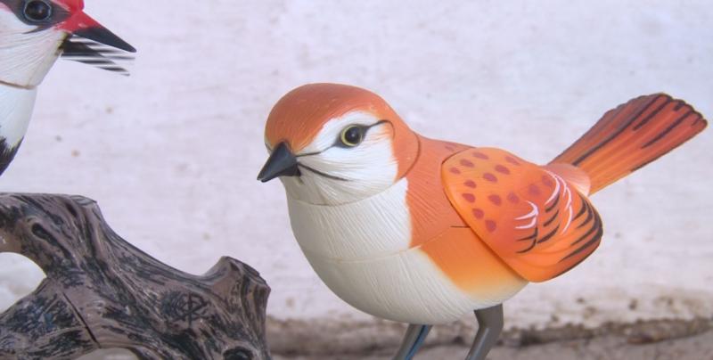 Pájaros de porcelana que imitan sonidos son opción para evitar depredación natural