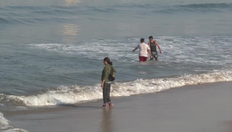 Advierten sobre la presencia de Mantarrayas en las playas, van 4 lesionados