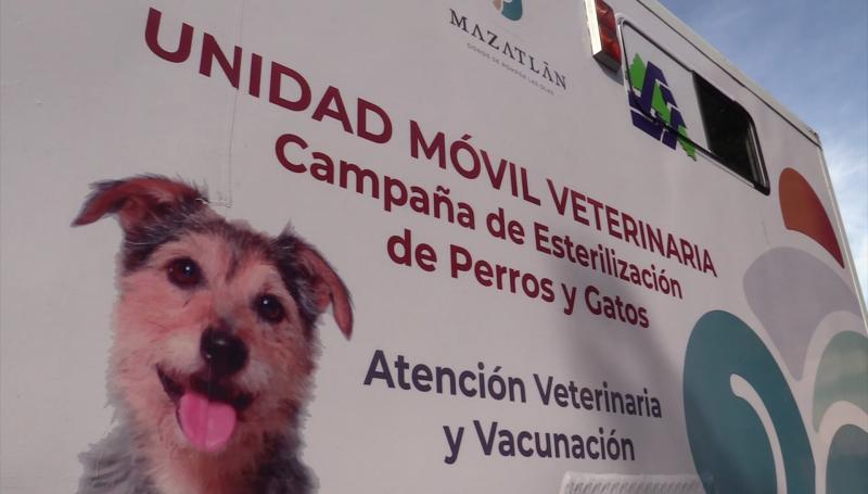 Regresa a operaciones la unidad canina de esterilización en Mazatlán