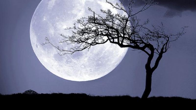 Descubre cuándo y cómo puedes ver la Super Luna de Nieve