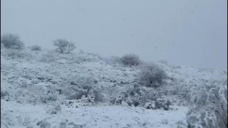 Seguirán manteniéndose bajas las temperaturas en la región y nevadas en el país: Meteorológico