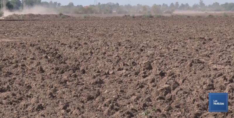Yaquis aprovecharán las fugas del Acueducto para regar sus cultivos