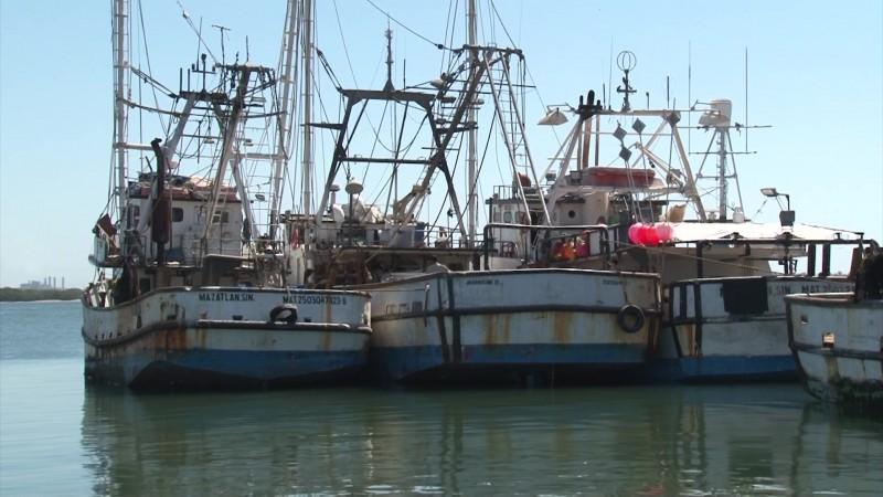 Se obstaculiza 'limpia' de inspectores de pesca en la CONAPESCA