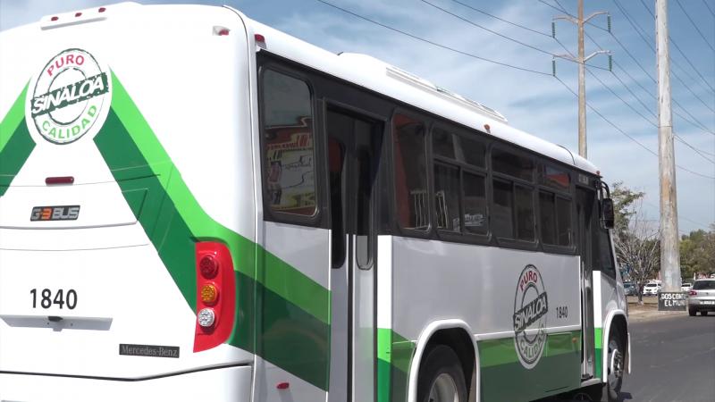 100 camiones de Alianza con aire acondicionado están circulando ya en Mazatlán