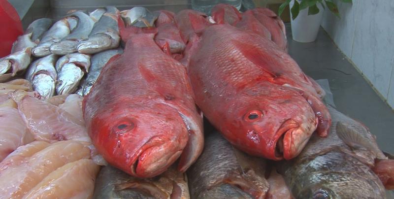 Intensifica PROFECO operativo en la venta de productos del mar