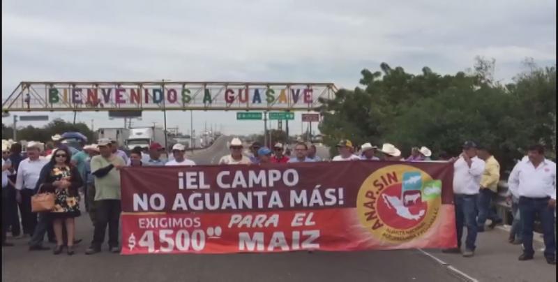 El sector agrícola de Sinaloa ha sido uno de los mas afectados en los primeros 100 días de AMLO