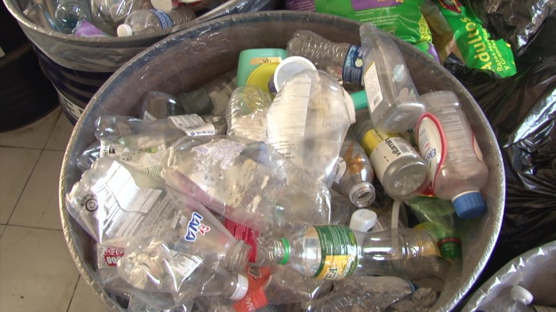 Buscan prohibir uso de bolsas de plásticos en Mazatlán