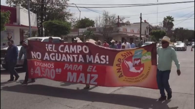 Algunos líderes agrícolas están adelantando escenarios catastróficos: Graciela Dominguez