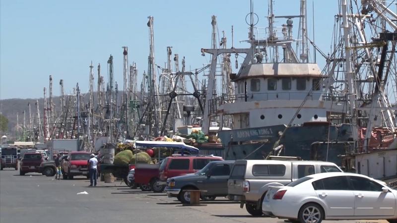 Piden a CONAPESCA regularicen embarcaciones
