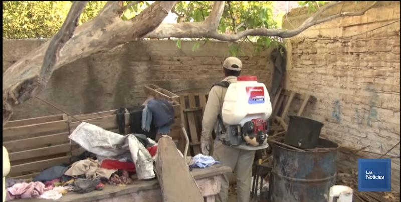 Marcado descenso en los casos de dengue en Sonora