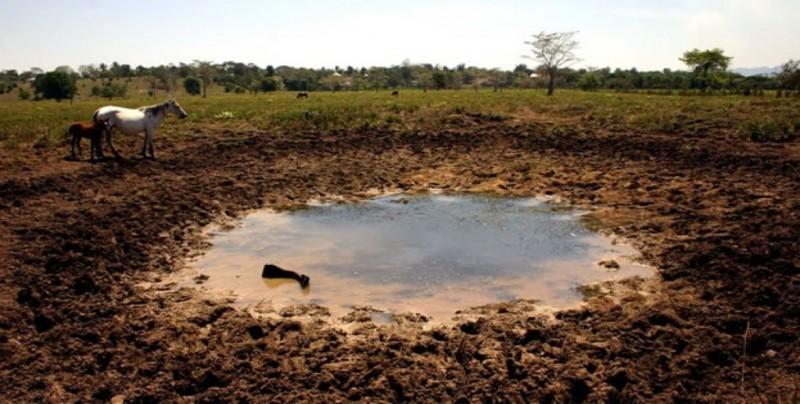 """La sequía obliga a agricultores a """"sembrar agua"""" en Oaxaca"""
