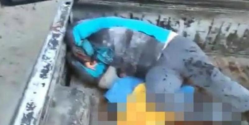 Pescadores y marinos se enfrentan por la veda de la vaquita marina