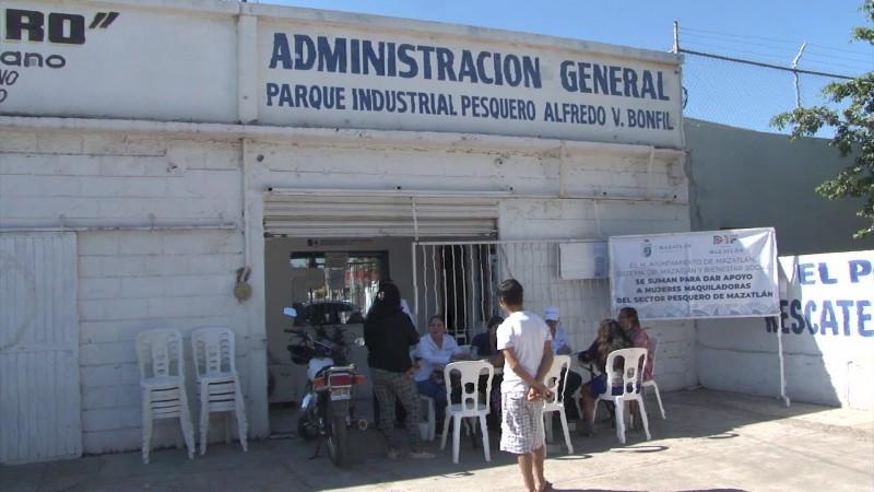 Mujeres de la pesca serán apoyadas en Mazatlán