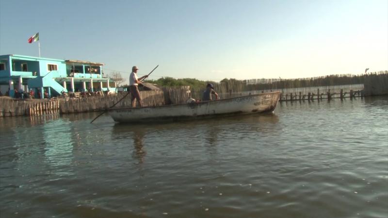 Necesario se bajen programas de apoyo a pescadores: Plancarte