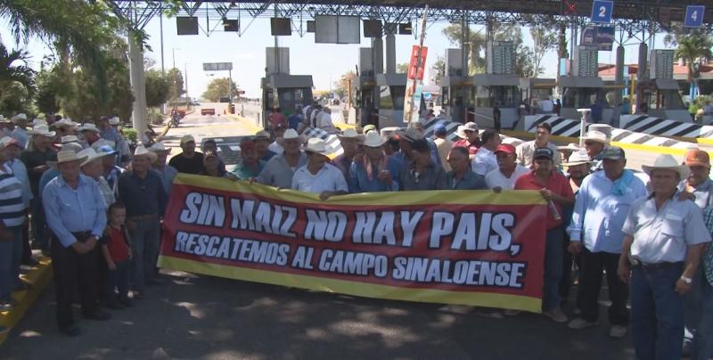 Alistan nueva manifestación de productores ante la nula respuesta de la SADER a las demandas de los maiceros