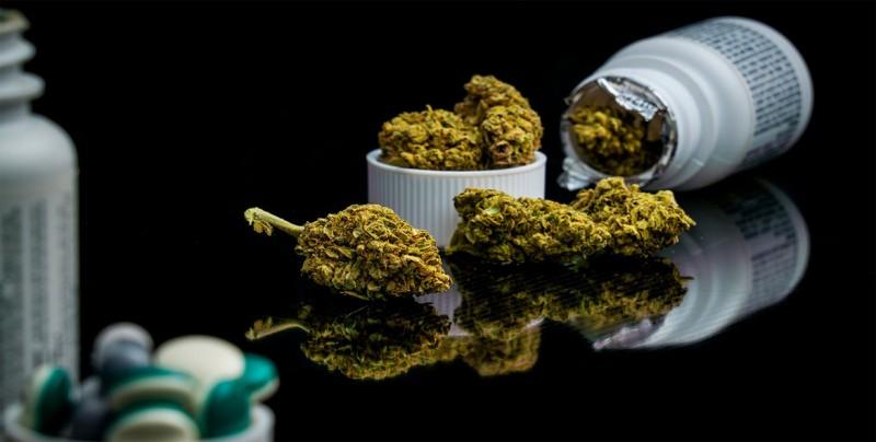 Ministro de salud hace recomendaciones para regulación de cannabis en México