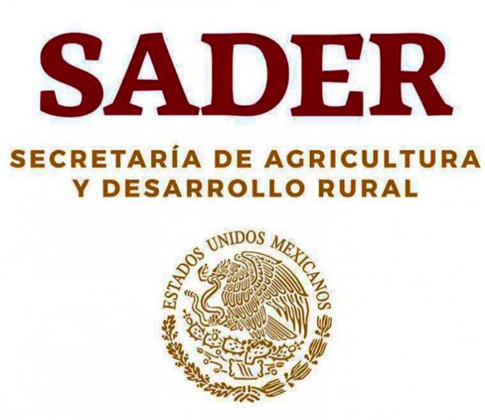 SADER pide a turistas no introducir al país alimentos prohibidos