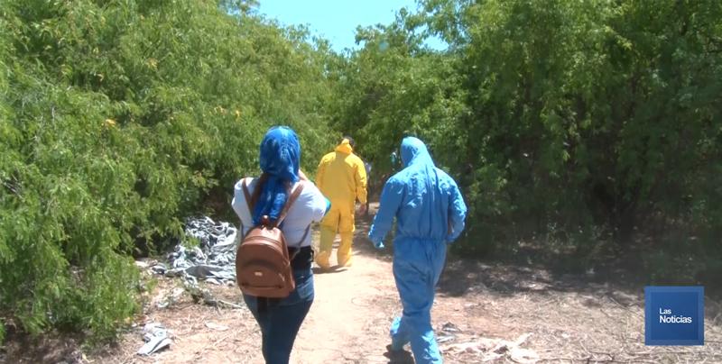 Guerreras Buscadoras realizarán voteo en playas de Guaymas y Empalme