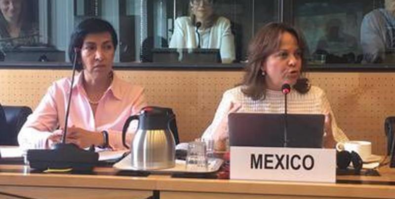 """México reconoce que """"queda mucho por hacer"""" para erradicar tortura en el país"""