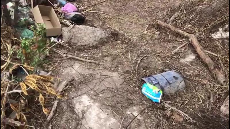 Realizan jornada de limpieza en el faro de Mazatlán