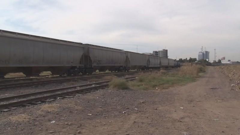 Exige la AARC revisar furgones de ferrocarril ante sospecha de contaminación en maíz importado