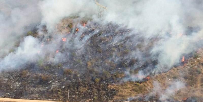 """Brigadas combaten fuerte incendio en predio """"El Calvario"""""""