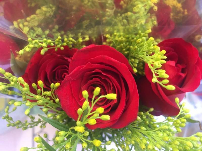 Reportan bajas ventas de flores