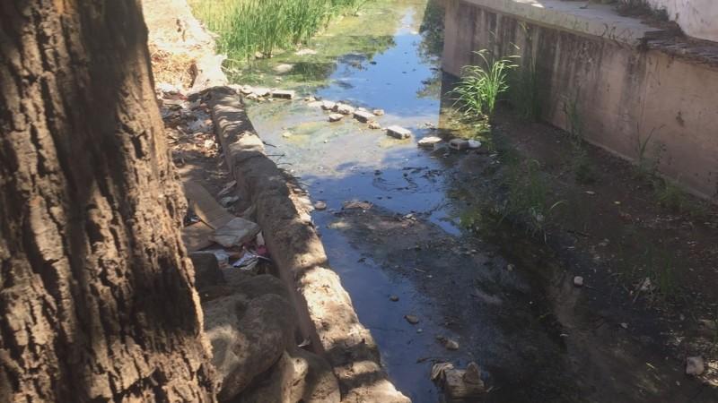Vecinos de Infonavit Humaya temen que se registren inundaciones por canal lleno de basura y maleza