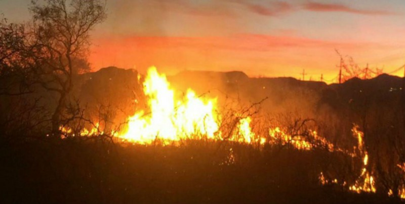Incendios forestales han afectado una superficie de 152,952 hectáreas